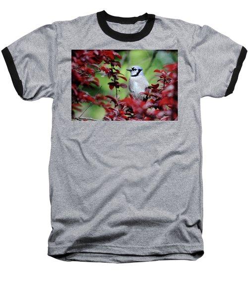 Blue Jay In The Plum Tree Baseball T-Shirt by Trina Ansel