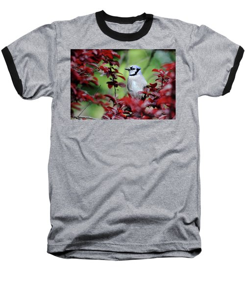 Blue Jay In The Plum Tree Baseball T-Shirt