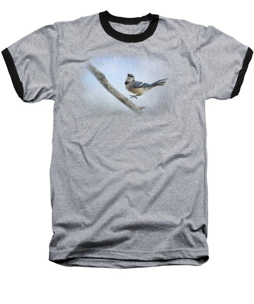 Blue Jay In The Snow Baseball T-Shirt by Jai Johnson