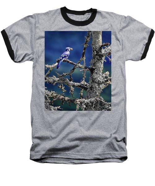 Blue Jay Mountain Baseball T-Shirt