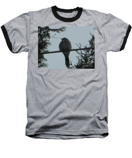 Blue Jay On Wire Baseball T-Shirt