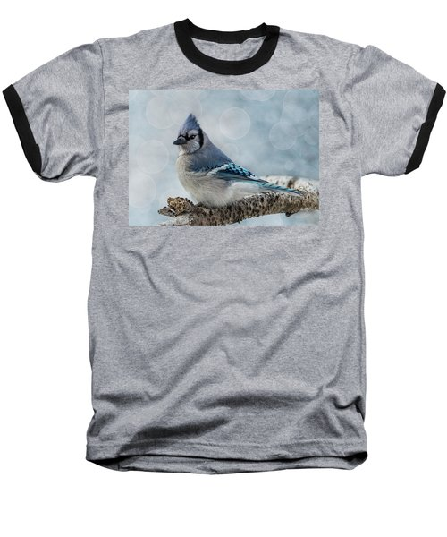 Blue Jay Perch Baseball T-Shirt