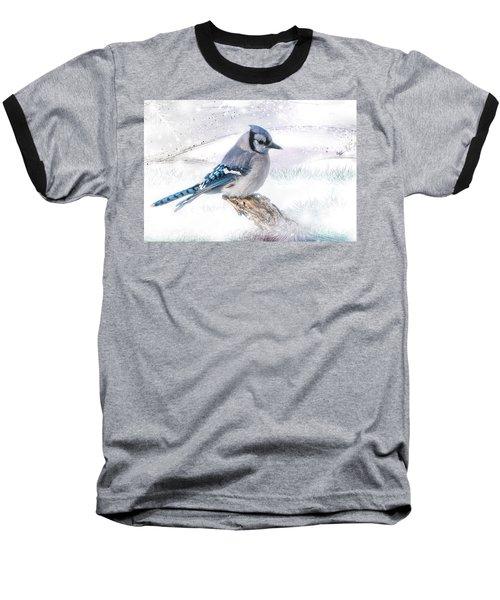 Blue Jay Snow Baseball T-Shirt