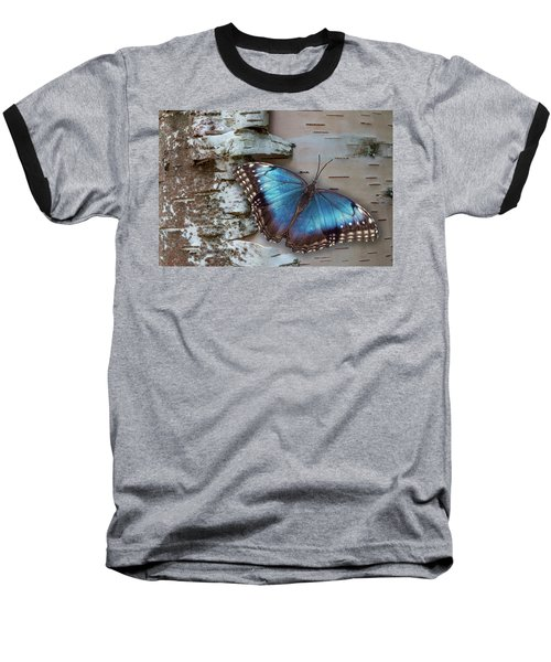 Blue Morpho Butterfly On White Birch Bark Baseball T-Shirt by Patti Deters