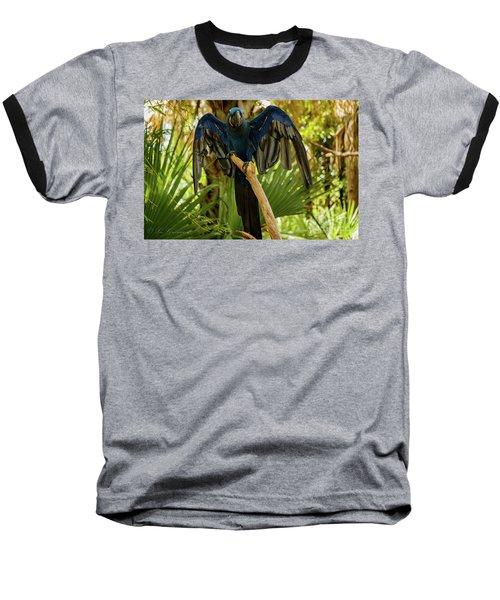 Blue Parrot Baseball T-Shirt