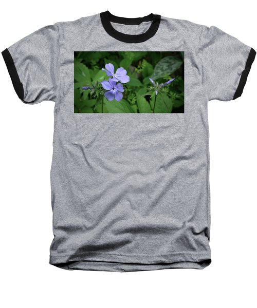 Blue Phlox Baseball T-Shirt by Tim Good