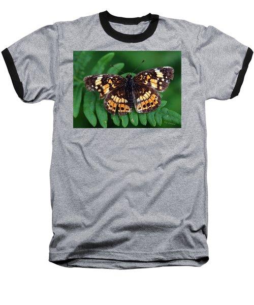 Blue Ridge Butterfly Baseball T-Shirt by Kay Lovingood