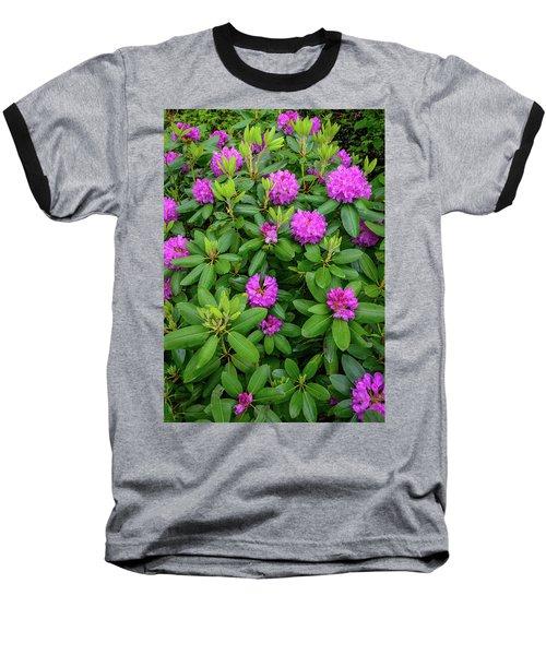 Blue Ridge Mountains Rhododendron Blooming Baseball T-Shirt