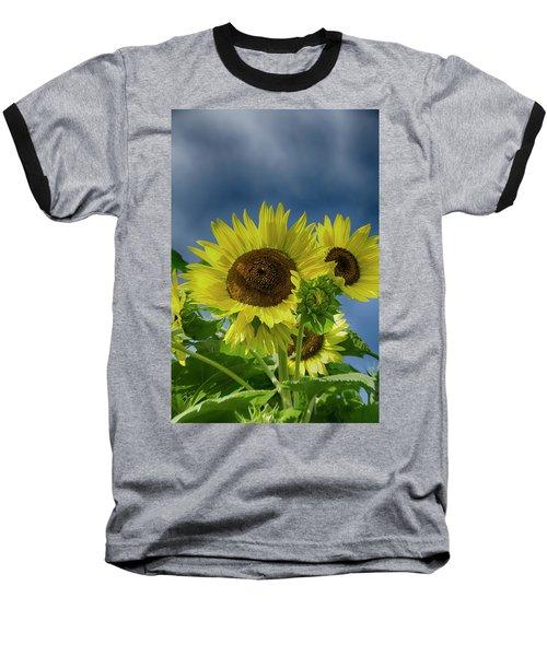 Blue Sky Day Baseball T-Shirt