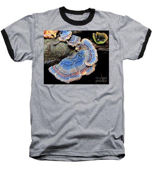 Blue Turkeytail Fungi Baseball T-Shirt