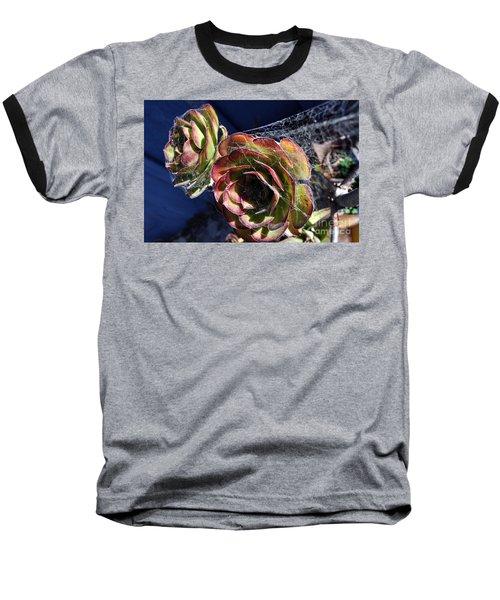 Blue Webs Baseball T-Shirt