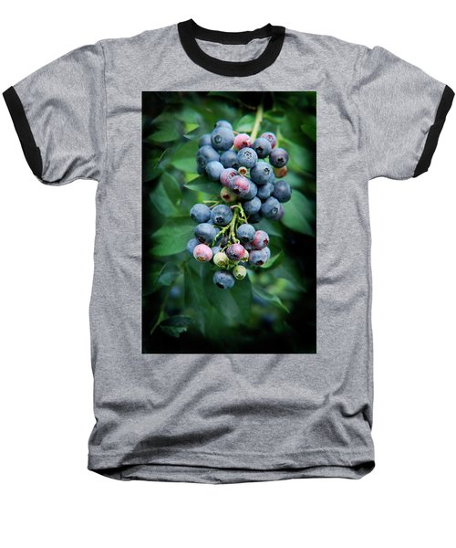 Blueberry Cluster Baseball T-Shirt