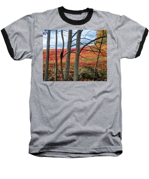 Blueberry Field Through The Wall - Cropped Baseball T-Shirt
