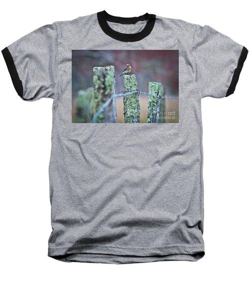 Bluebird 040517 Baseball T-Shirt by Douglas Stucky