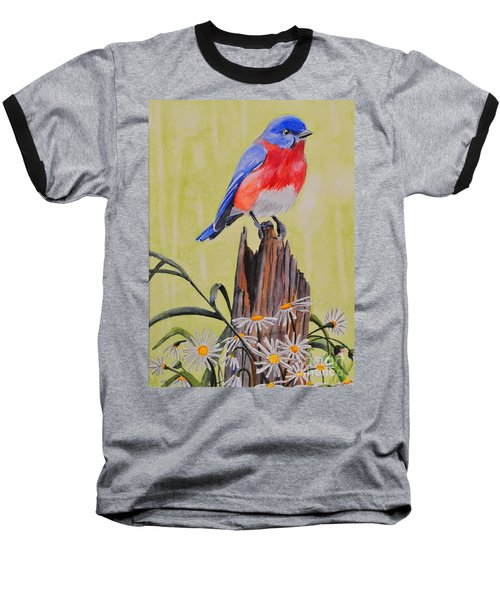 Bluebird And Daisies Baseball T-Shirt