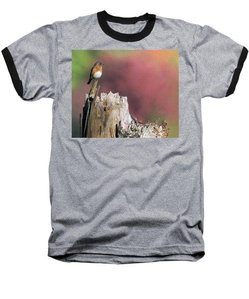 Bluebird Fall Perch Baseball T-Shirt