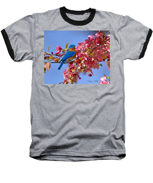 Bluebird In Apple Blossoms Baseball T-Shirt by Marie Hicks