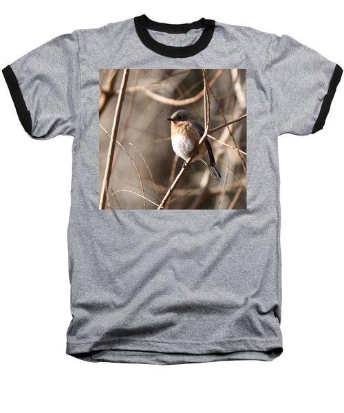 Bluebird In Beige Baseball T-Shirt