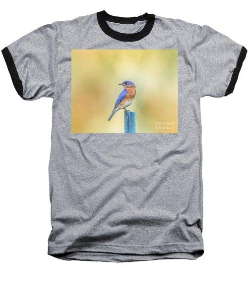 Bluebird On Blue Stick Baseball T-Shirt by Robert Frederick