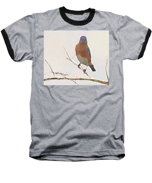 Bluebird Stare  Baseball T-Shirt