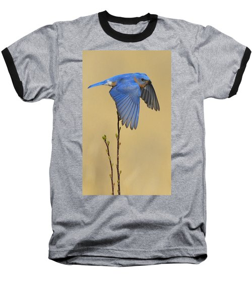 Bluebird Takes Flight Baseball T-Shirt