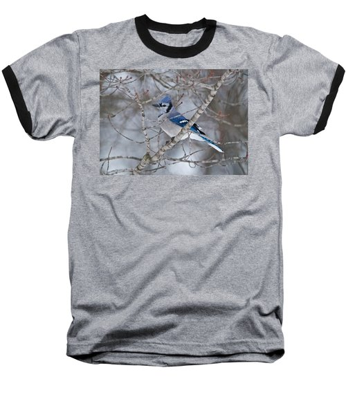 Bluejay 1358 Baseball T-Shirt