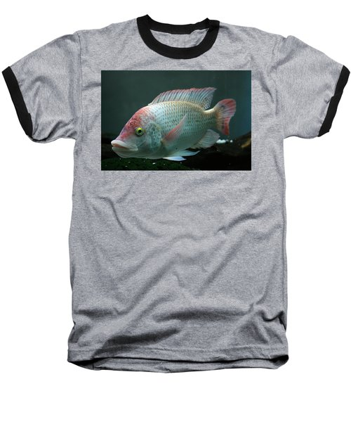 Blushing Tilapia Baseball T-Shirt