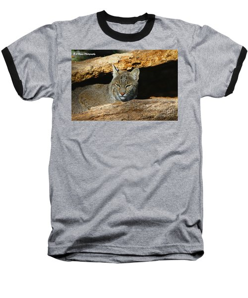 Bobcat Hiding In A Log Baseball T-Shirt
