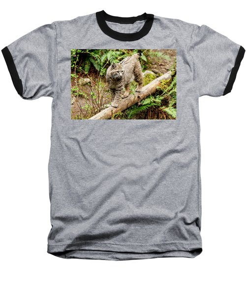Bobcat In Forest Baseball T-Shirt by Teri Virbickis