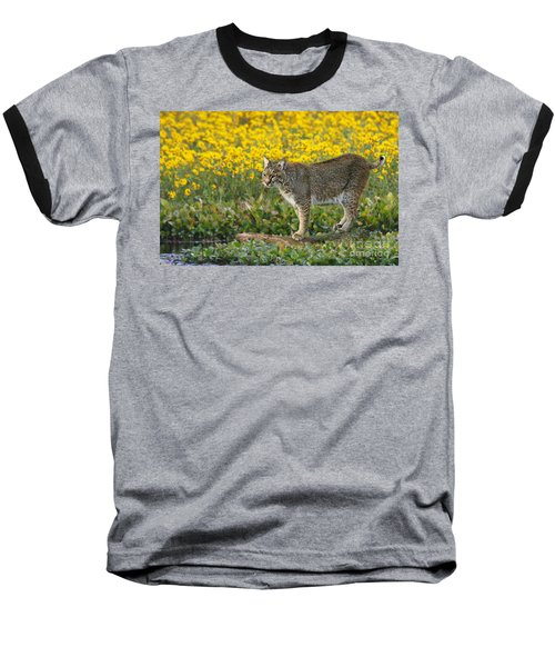 Bobcat In The Swamp Baseball T-Shirt by Myrna Bradshaw