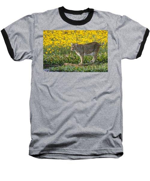 Bobcat In The Swamp Baseball T-Shirt