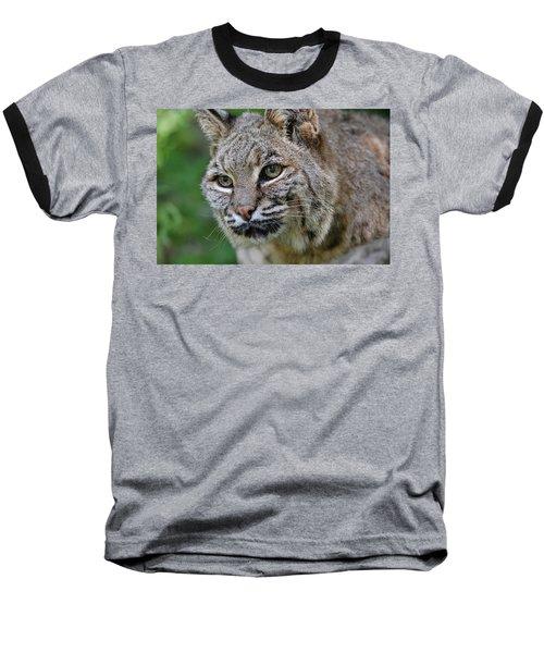 Bobcat In The Trees Baseball T-Shirt