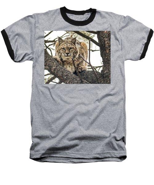 Bobcat In Winter Baseball T-Shirt