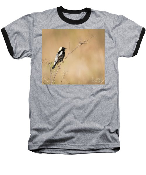 Baseball T-Shirt featuring the photograph Bobolink  by Ricky L Jones