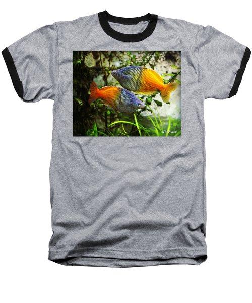 Boeseman's Rainbowfish Baseball T-Shirt