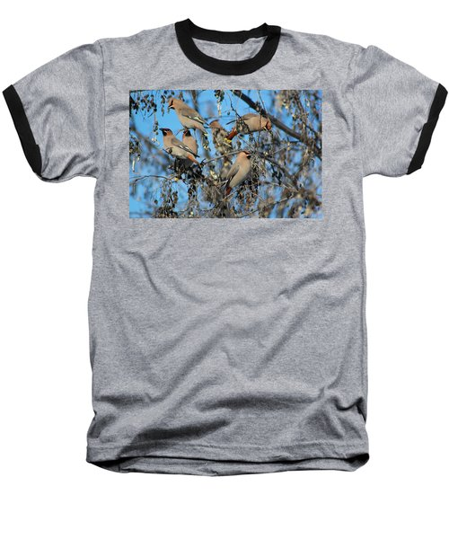 Baseball T-Shirt featuring the photograph Bohemian Waxwings by Kathy Bassett