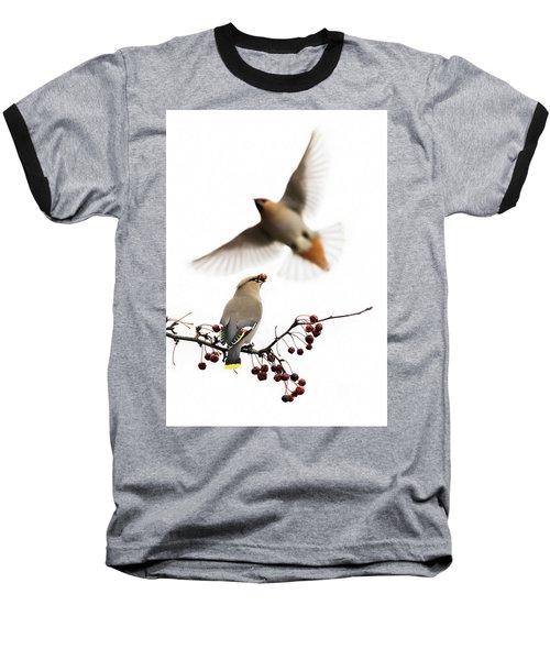 Baseball T-Shirt featuring the photograph Bohemian Waxwings by Mircea Costina Photography