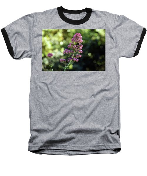 Bokeh Of Anacapri Flower Baseball T-Shirt