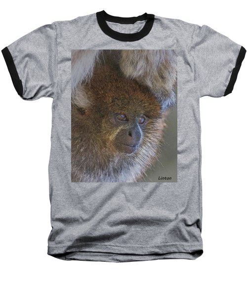 Bolivian Grey Titi Monkey Baseball T-Shirt