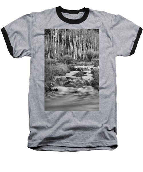 Bonanza Streaming Baseball T-Shirt by James BO Insogna