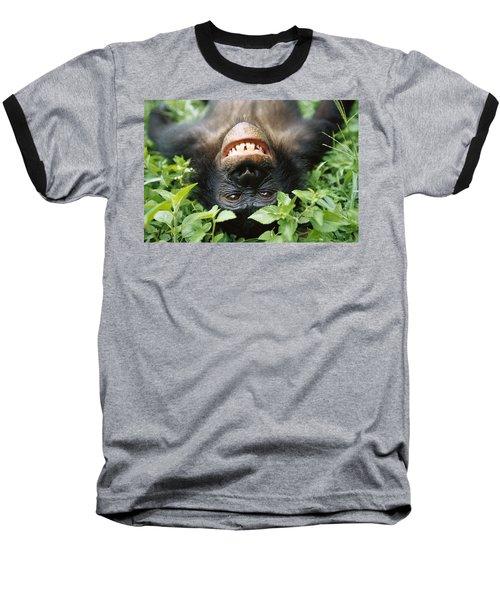 Bonobo Smiling Baseball T-Shirt