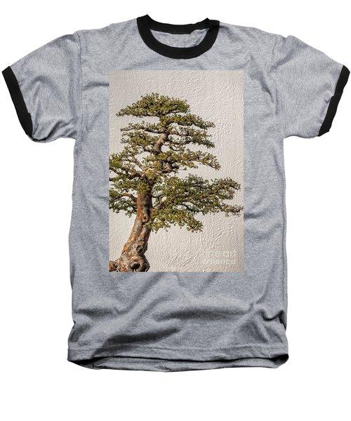 Bonsai Tree Baseball T-Shirt