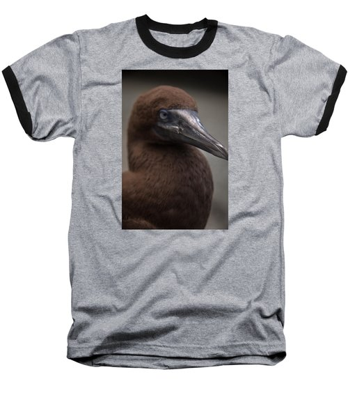 Booby Baseball T-Shirt