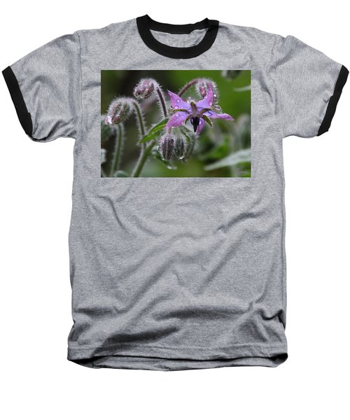 Borage Umbrella Baseball T-Shirt