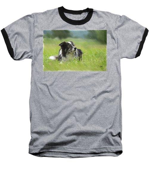 Border Collie - Dwp2189332 Baseball T-Shirt