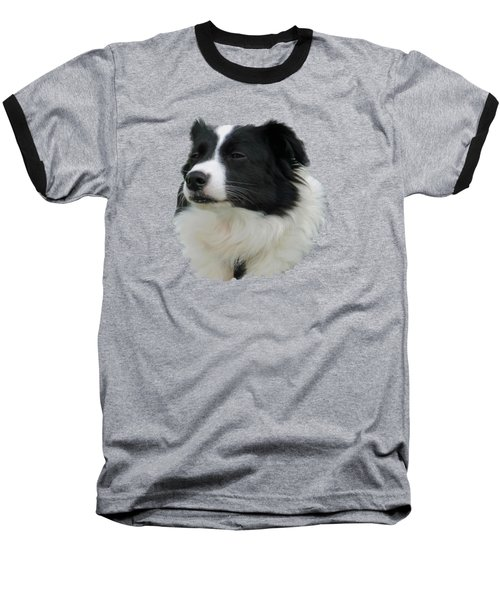 Border Collie Baseball T-Shirt by Pamela Walton
