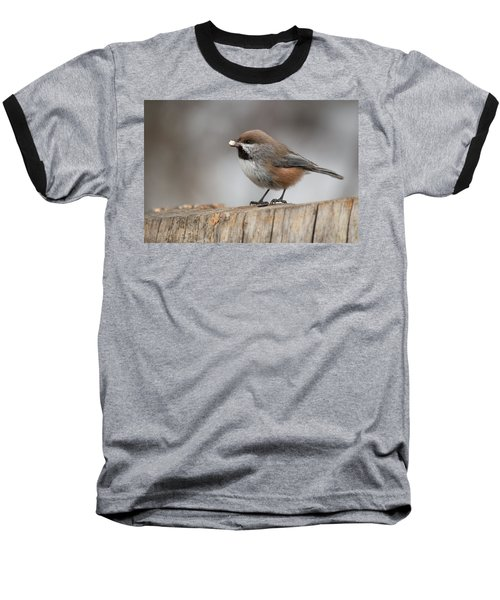 Boreal Chickadee Baseball T-Shirt