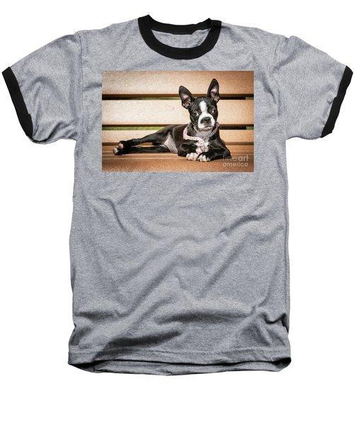 Boston Terrier Puppy Relaxing Baseball T-Shirt