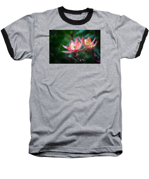 Botanic Garden Of Wales 1 Baseball T-Shirt