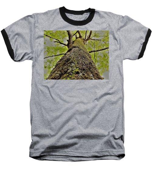 Botanical Behemoth Baseball T-Shirt